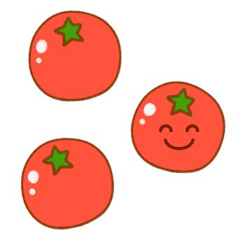 Nico Nico Petit Tomato