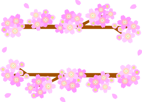 Cherry blossoming frame 1