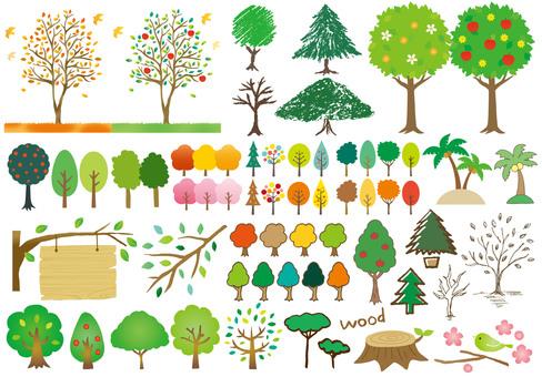 나무 여러 터치