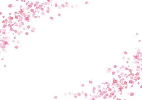 Cherry blossom petal background material frame