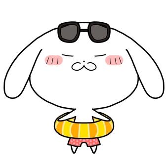Doya face rabbit summer