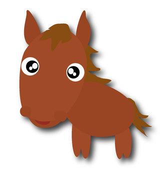 An eye-catching horse
