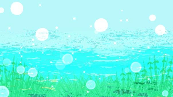 Background wallpaper