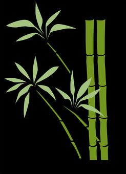 대나무 C