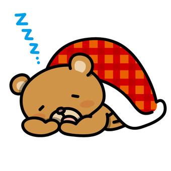 A bear who wears a futon and sleeps asleep