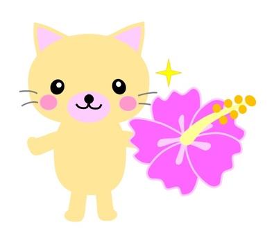 Cat and hibiscus