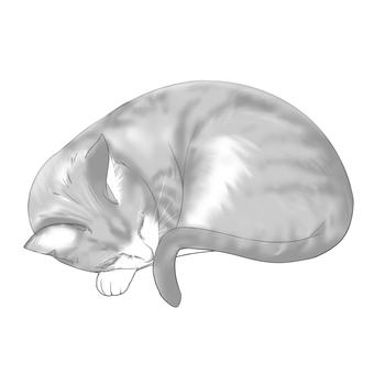 Cat _ 02 _ round
