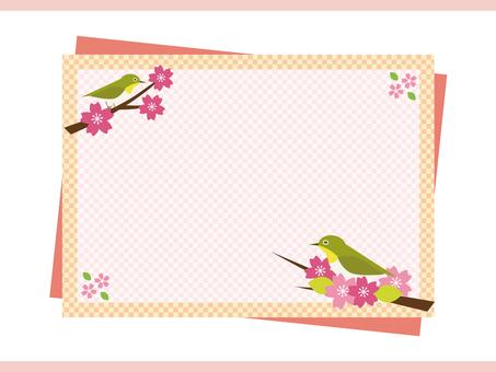Cherry Blossom Frame (Pink)