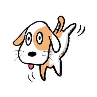 달리는 개