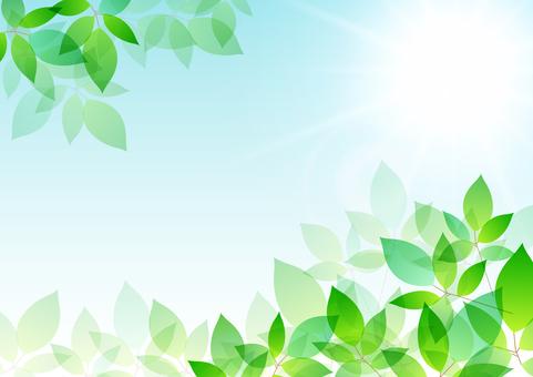 Fresh green material 183
