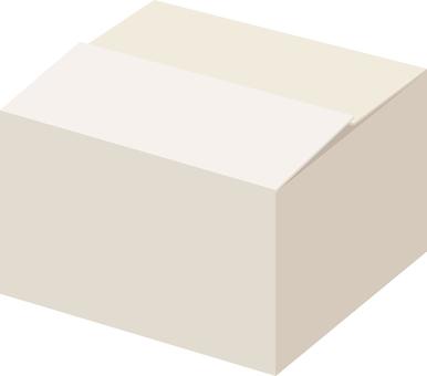 Cardboard box (white)