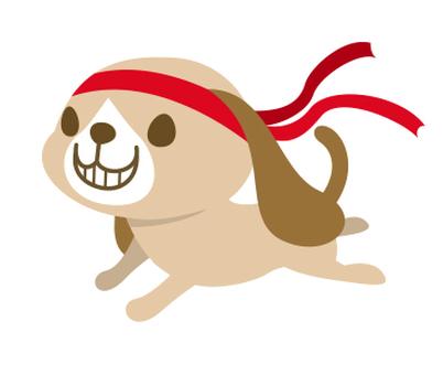 달리기 개