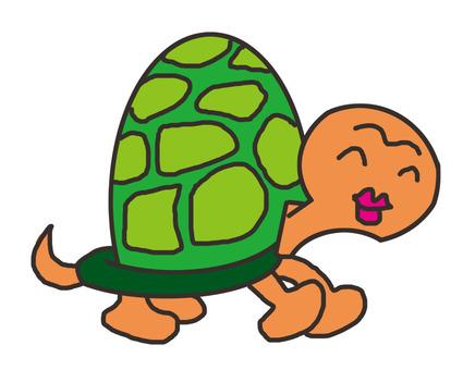 Turtle Mr. 2