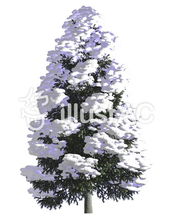 樹木トウヒ モミの木と雪イラスト No 606298無料イラストなら