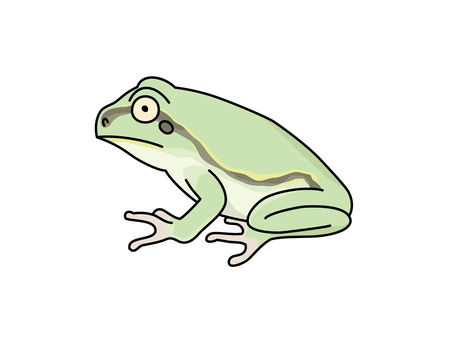 Frog 1