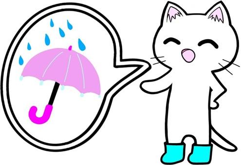 Rain umbrella cat