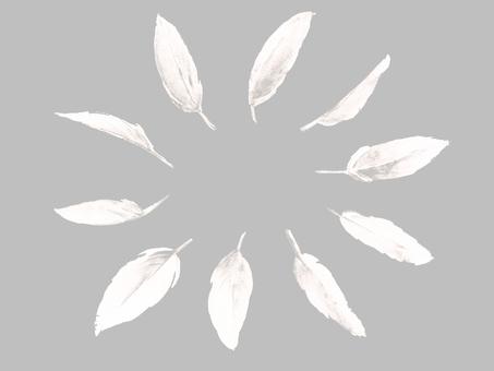 白い羽根セット