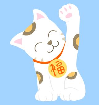 Cheek cat 02b