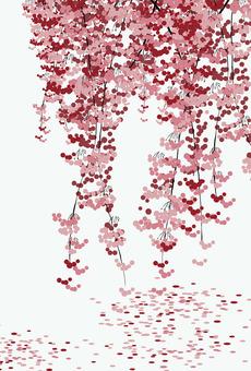 blossms2