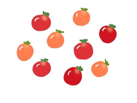 Petit tomato sparkling