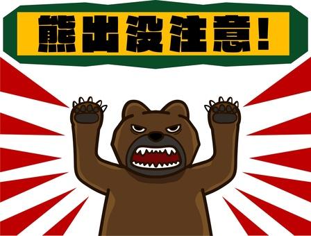 곰이 나왔다!