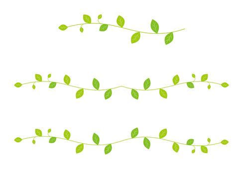 잎의 라인
