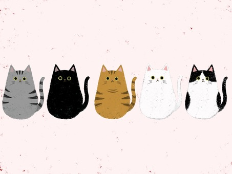 Cat-chan large set (background pink)