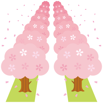 벚꽃 -03 (벚꽃길)