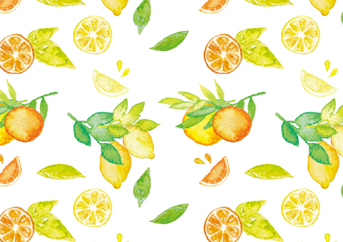 << Watercolor style >> citrus pattern