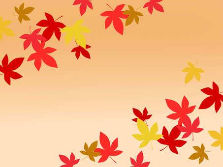 가을의 프레임 1