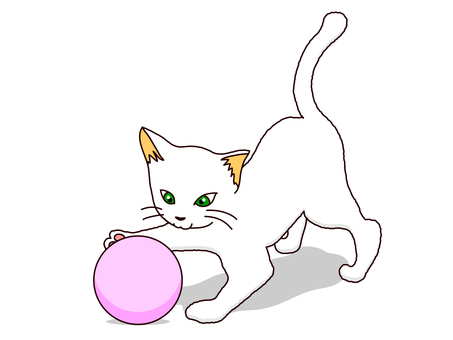 Ball play cat