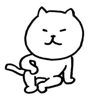 Coarse cat