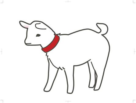 Child goat