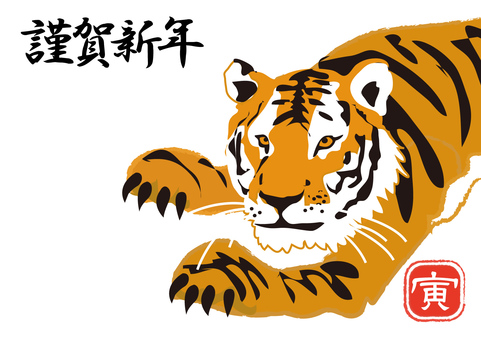 Animals _ Tiger 5