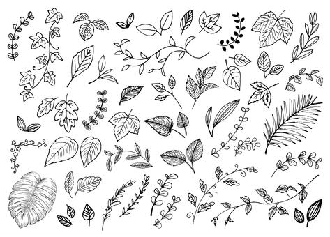 Various handwritten leaves