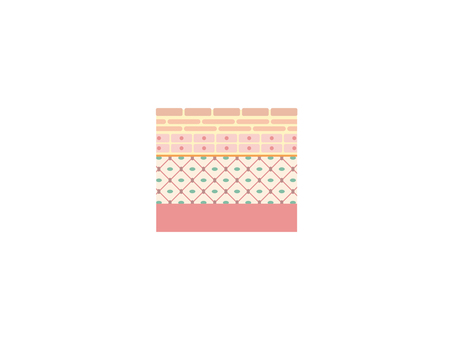 Cross section of skin (subcutaneous tissue)