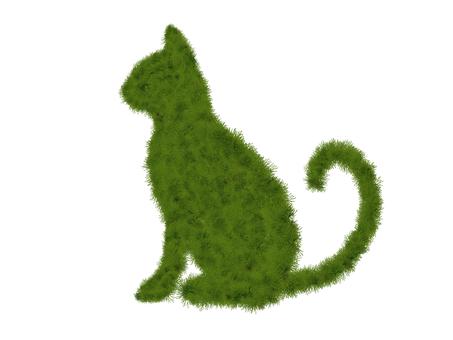 Moss cat