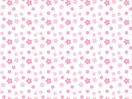 벚꽃 패턴 (핑크)