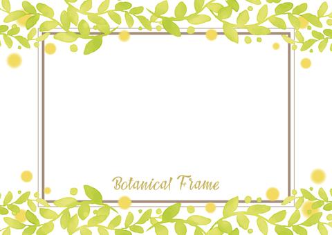 Botanical Frame 3
