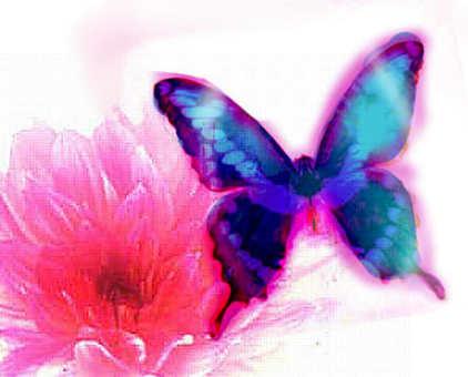 淡藍色的蝴蝶和鮮花