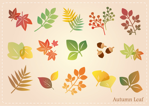 Autumn Leaf Set