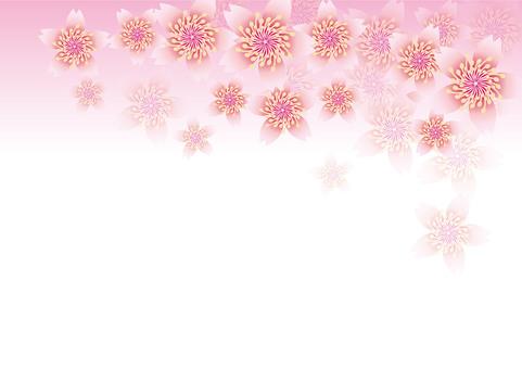 Blooming flowers 226