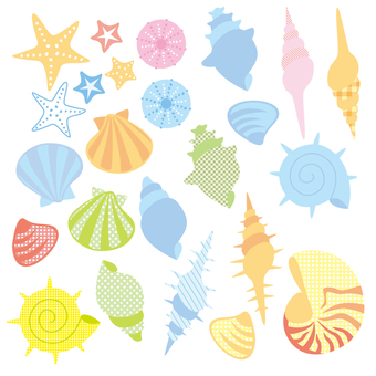 Conjunto de conchas