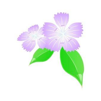 Light purple Nadesico