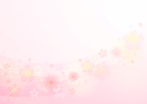 Cherry blossoms 170