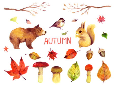 Autumn watercolor illustration