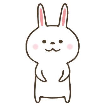 Cute rabbit / hand-painted