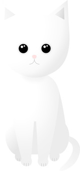 Sitting - white cat