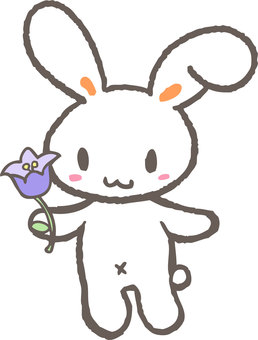 Flowers and rabbits