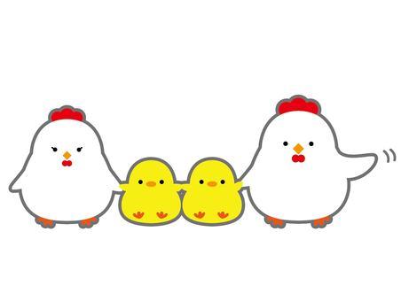 Chicken parent and child